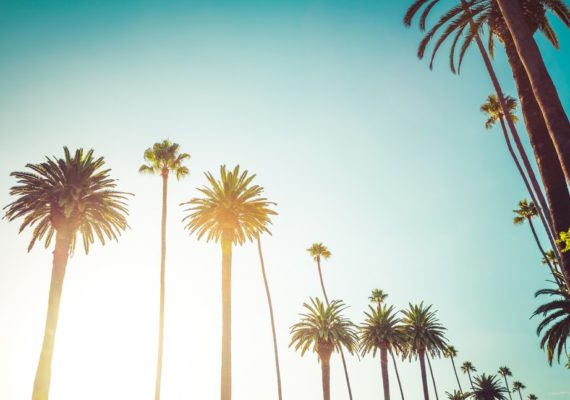 What to Know About Moving to California